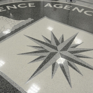CIA cyber-spying toolkit now in hands of hackers worldwide: WikiLeaks